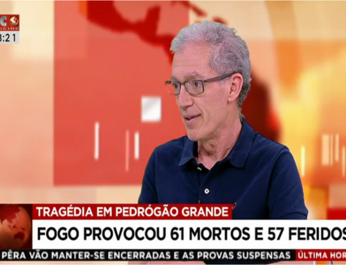 Pedro Miranda comments on the fire of Pedrógão Grande (SIC Notícias)