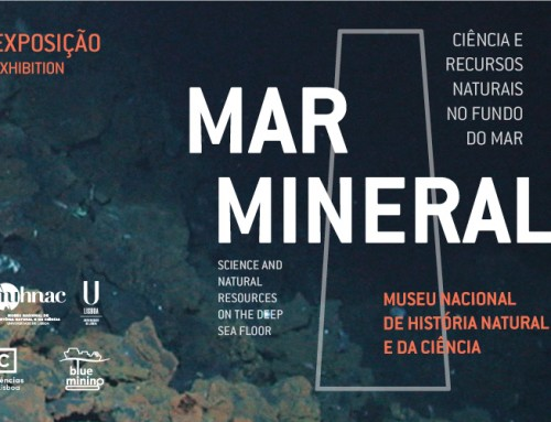 "Exhibition ""Mar Mineral"""