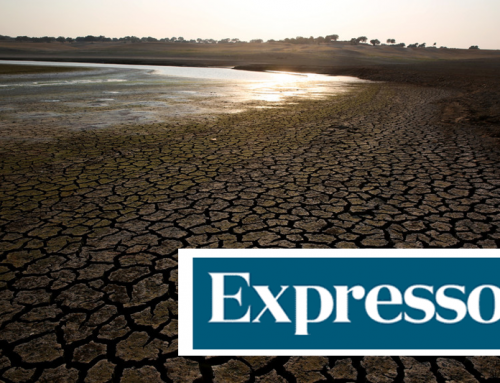 Interview to Pedro M. M. Soares to Expresso about Portugal's climate change scenarios