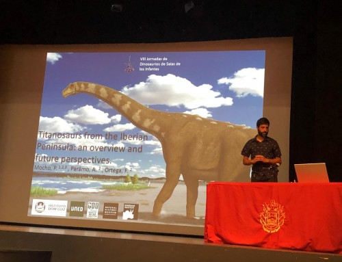 IDL at the VIII International Symposium about Dinosaurs Palaeontology and their Environment